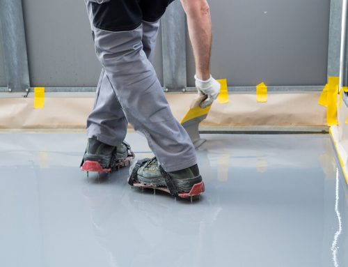 The Best DIY Guide To Reduce Moisture in a Basement